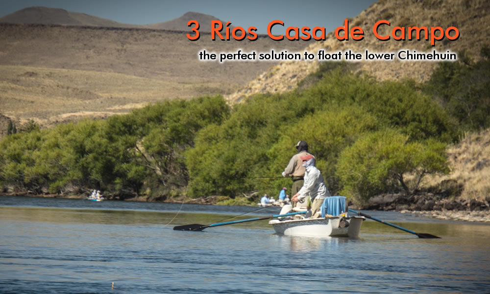 fish on - middle limay river photo