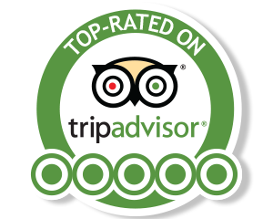fly fishing in patagonia reviews in tripadvisor icon