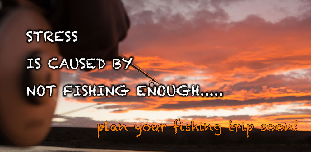 Stress is caused by no fishing enough