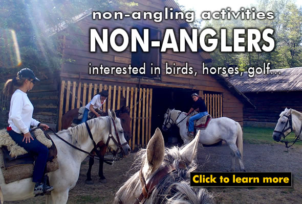 some lodges offer great horse back riding
