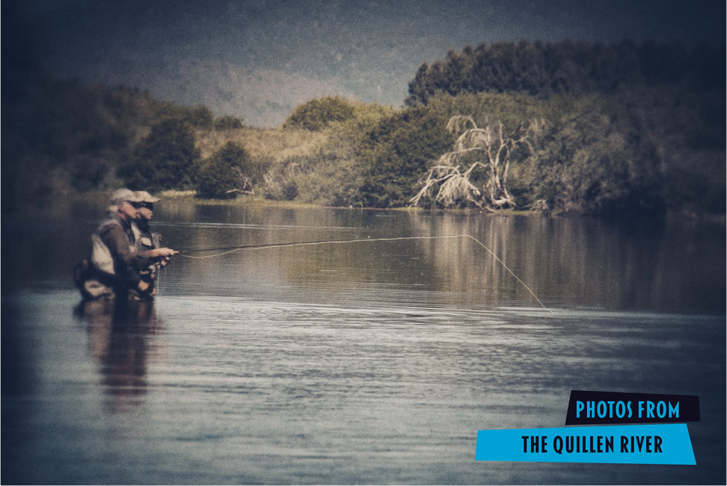 Fly fishing the quillen river