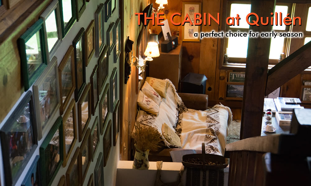 inside the quillen cabin photo